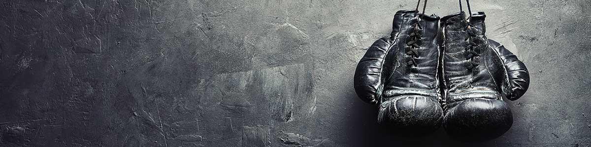 boxningshandskar billigt, snabb leverans